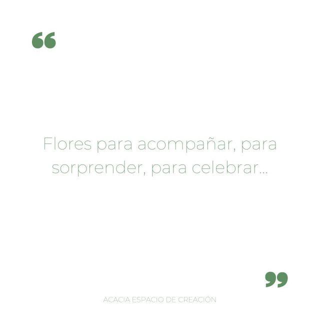 Flores para acompañar, para sorprender, para celebrar…✨ . . #flores #loreak #floresparasorprender #sorprende #celebra #despide #floristeria #floristeriaacacia #tafalla #navarra